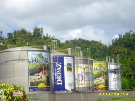 Depaz, la Distillerie